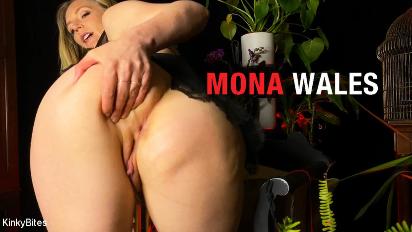 Video 1544767104: mona wales, fetish solo masturbation, big tits solo masturbation, ass big tits solo, solo female big tits, stockings solo masturbation, solo big tit blonde, fetish small titted, submitted, woman